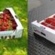 jordgubbslador